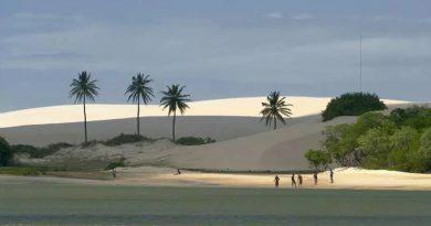 Com avanço da vacinação e redução de casos de COVID-19, o mercado de locação de veículos no Ceará já se prepara para a retomada do turismo no Ceará