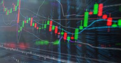 Gestores explicam como escolher poucas (e boas) ações para investir