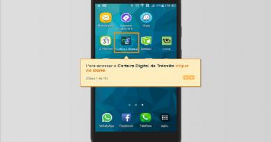 CNH e CRLV digitais podem ser feitos pela internet em São Paulo Imagem: divulgação