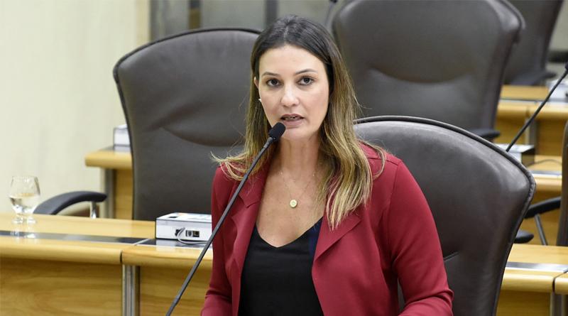 Assembleia legislativa: Prorrogação de vencimento do IPVA